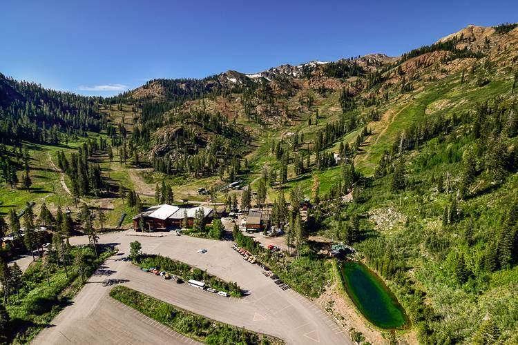 Alpine Meadows Real Estate Area-2