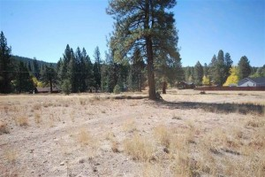 Truckee Lot for sale! truckee real estate