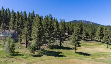 Skidder Trail Truckee Real Estate