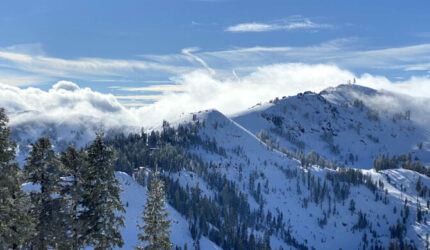Alpine Meadows and Squaw Valley